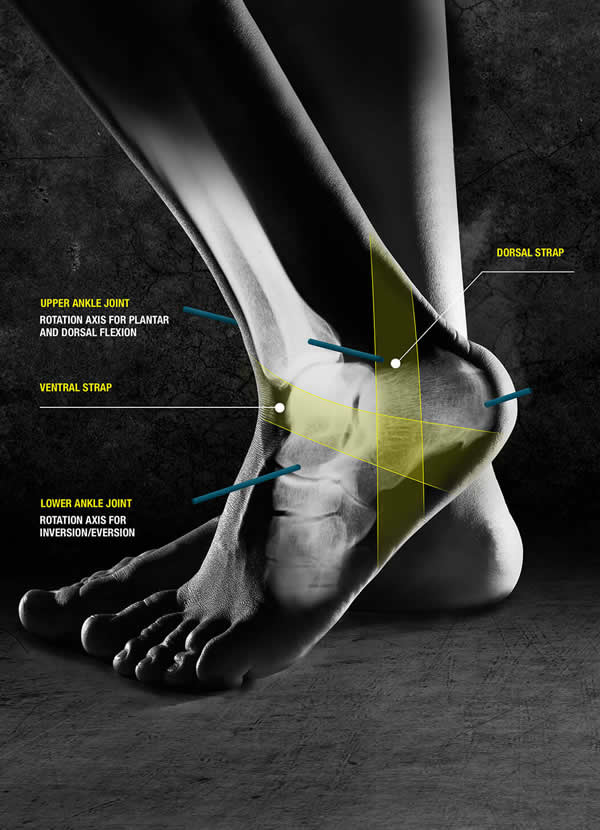 Ankle Brace Kicx Braces Push Sports Braces